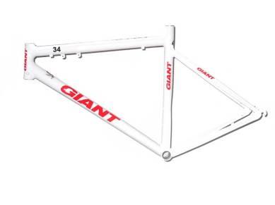 giant-blanca