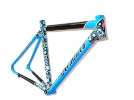 Specialized-flores.3